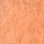 [72] Łososiowy