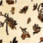 [45] Jesień