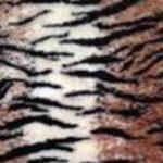 [87] Tygrys